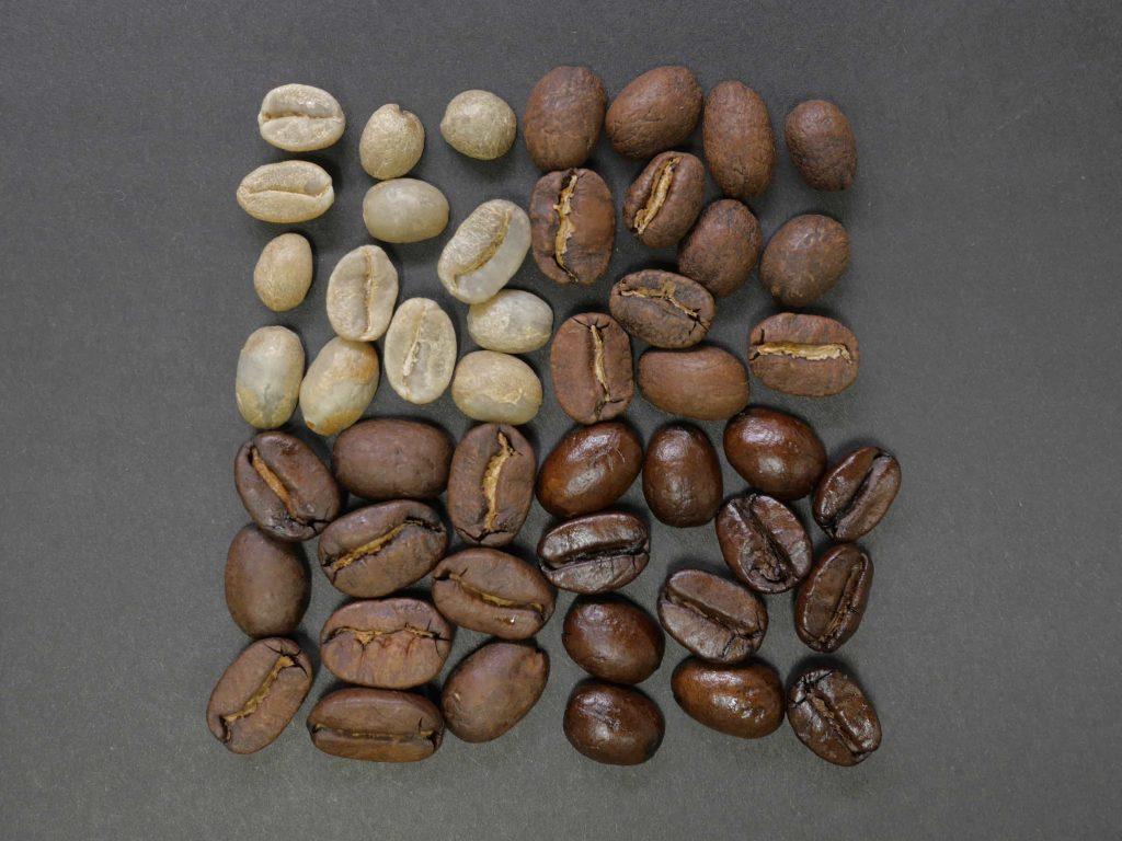 distintos tipos de granos de café