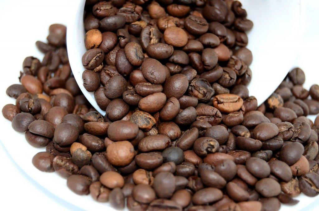 granos de café en fondo blanco