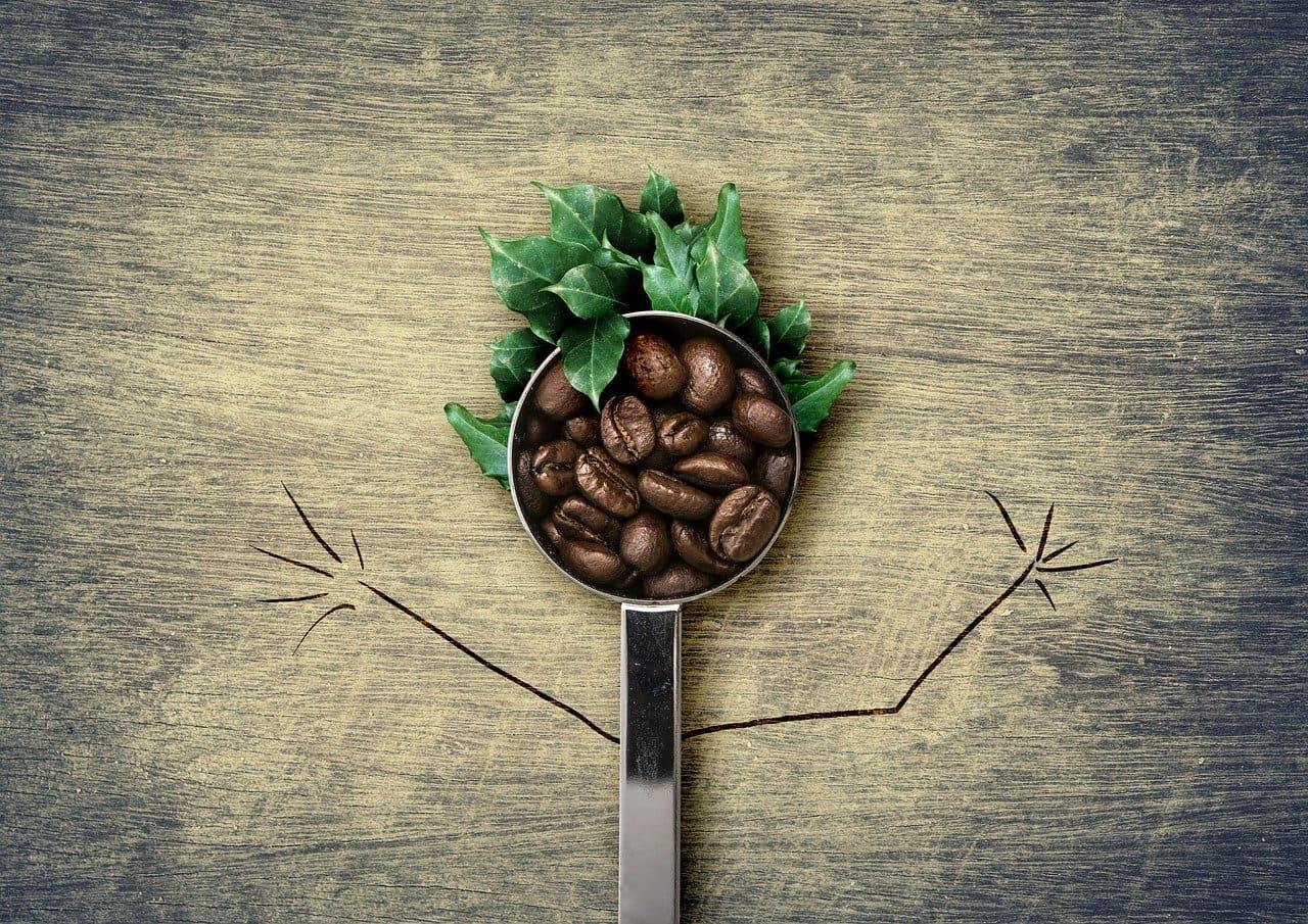 mayores productores de café