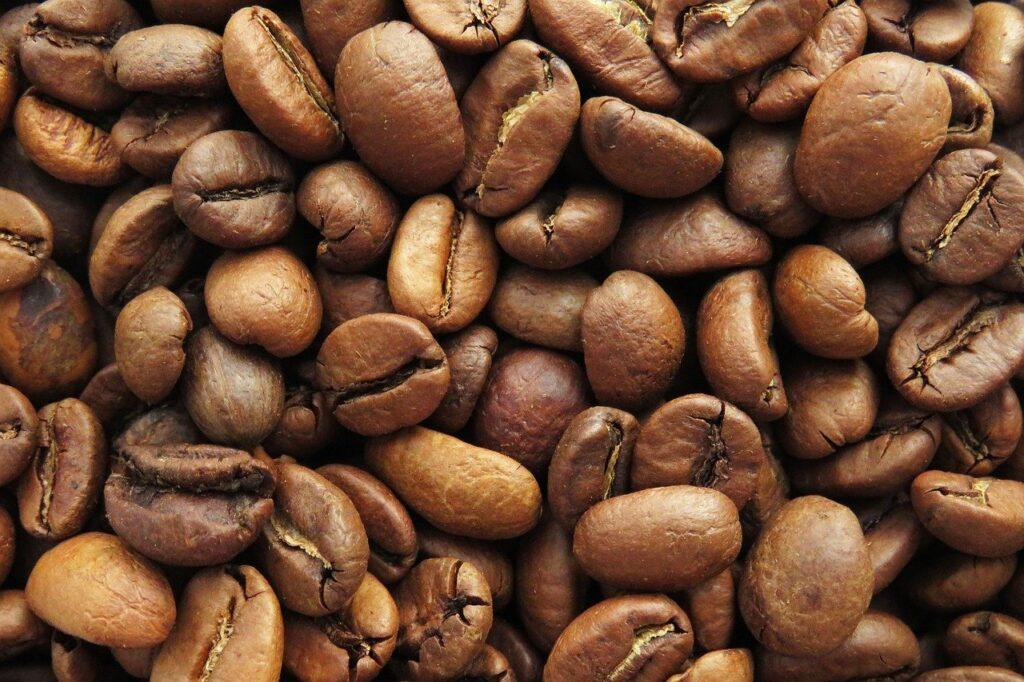 variedades de café arábica